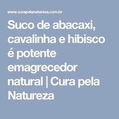 Suco de abacaxi, cavalinha e hibisco é potente emagrecedor natural   Cura pela Natureza