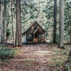 this exact cabin