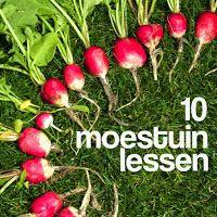 10 moestuinlessen tips Veg Garden, Fruit Garden, Edible Garden, Garden Plants, House Plants, Vegetable Gardening, Growing Veggies, Growing Herbs, Eco Friendly Cars