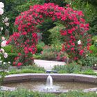 Rose Garden, Cleveland Botanical Garden