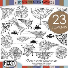Spider Web Doodle Clip Art Clipart Digital Images PNG by Nedti