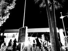 Festival de Cannes - Flashs et palmiers
