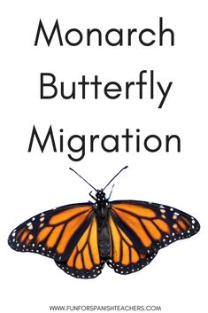 You searched for butterfly - FunForSpanishTeachers Elementary Spanish, Spanish Class, Teaching Spanish, Monarch Butterfly Migration, Learning, Foreign Language, Fun, Languages, Blog