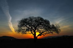 """/ Photo """"Sunset"""" by Novais Almeida Beautiful Sunset, Beautiful Places, Amazing Places, Sunset Silhouette, Picture Places, Take Me Home, Photos, Pictures, Image Photography"""