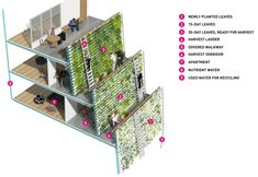 Architecture firm SPARK unveiled Homefarm, a visionary design that combines urban retirement housing with vertical urban farming into a live-farm typology. Spark Models, Farming System, Covered Walkway, Urban Farmer, City Farm, Vertical Farming, Green Building, Recycled Glass, Building Design