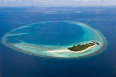 Maldives, Mayafushi island - Honeymoon??