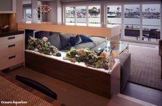 200 gallon living reef custom aquarium. Room divider peninsula style aquarium. In Long Beach, CA