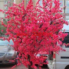 20 PCS Red Japanese cherry blossoms Courtyard Little Garden Bonsai Small Sakura Tree Seeds Mixed Colors home Bubble bag