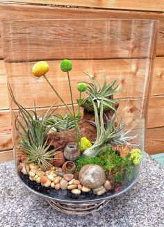 Air Plant Terrarium Kit And Stained Glass Inspiration (33) – HomeDecorMagz