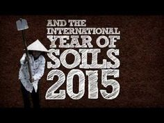 Support World Soil Day and the International Year of Soils 2015  #remineralize #organic #excelerite