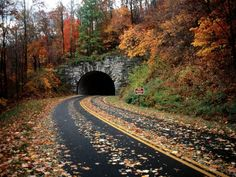 The Blue Ridge Parkway  perfect place for an autumn drive