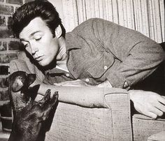Clint Eastwood and dachshund. Everyone loves a dachshund Clint Eastwood, Dog Love, Puppy Love, Gato Animal, Dachshund Love, Daschund, Vintage Dachshund, Dachshund Breed, Dapple Dachshund
