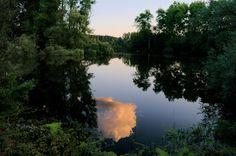 am Baggersee bei Leopoldshafen in den Abendstunden
