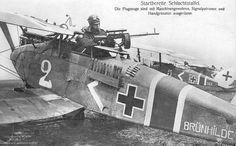 Halberstadt CL-II