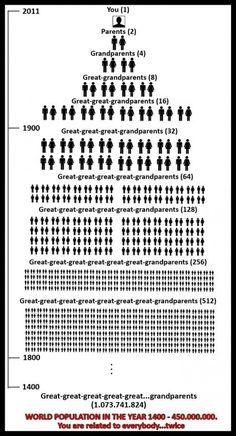 ¿De cuántas personas desciendo? ¿Qué es el Implexo?