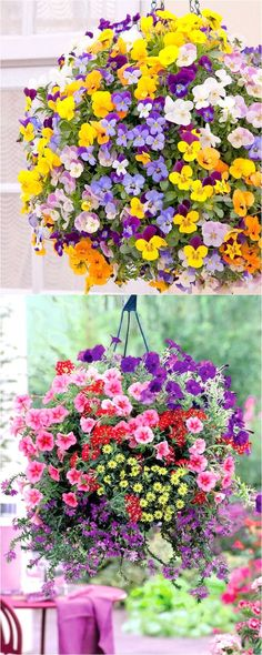 Outdoor DIY Inspiration : How to plant beautiful hanging baskets that last for months. Choose the best plants from these 15 designer plant lists for hanging flower baskets in sun or shade, plus easy care tips on soil, water and fertilizer for a healthy hanging basket! – A Piece of...