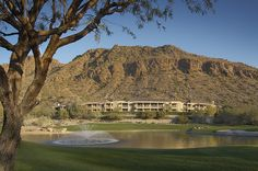 The Canyon Suites at The Phoenician — Scottsdale, United States Phoenician, Arizona, Golf Courses, United States, Explore, Mansions, House Styles, Phoenix, Places