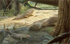 devonian - Google Search