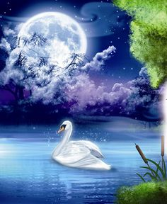 El lago de los cisnes, Jorge Zequiera Brit