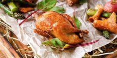 🥚 Το Ορτύκι και τα αυγά του αποτελουν μία ιδιαίτερη διατροφική επιλογή! Μάθετε τη διατροφική του αξία εδώ: Turkey, Meat, Food, Turkey Country, Essen, Meals, Yemek, Eten