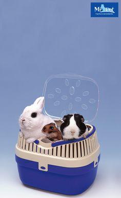 Transportni kovček ALADINO omogoča varno in enostavno prenašanje hrčkov, miši, pritlikavih kuncev,.. Pokrov transporterja ima reže, ki omogočajo svež dotok zraka.