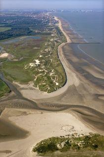 La réserve naturelle Het Zwin à Knokke (Flandre occidentale, Belgique). Natuurreservaat Het Zwin in Knokke, (West-Vlaanderen, België).