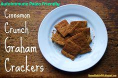 #AIP friendly Cinnamon Crunch Graham Crackers via http://beyondthebite4life.blogspot.com/2014/12/cinnamon-graham-crackers-aip-friendly.html