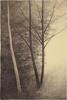 Woodland Papier peint Arbres Forêt hivernale Glitter Sparkle Blanc Gris Noir Argent