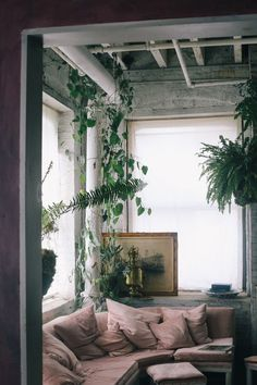 dusky pink sofa, lots of light and hanging plants