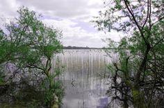 Neue Ideen für Schaalseeregion