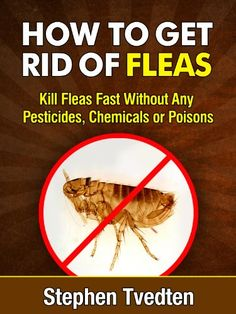 How To Kill Fleas In Your Home And On Your Pet The Pets