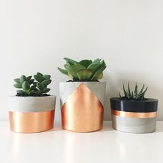 Image of Planter Trio - Copper & CharcoalThis stunning trio consists of 3 concrete planters (varying sizes) handpainted in a rose gold and charcoal design.Browse all products in the Concrete Homewares category from Coral & Herb. Concrete Pots, Concrete Crafts, Concrete Projects, Concrete Planters, Painted Plant Pots, Cactus Decor, Home And Deco, Home Crafts, Flower Pots
