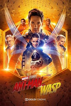 "Here's a look at the exclusive Dolby poster for Marvel Studios' ""Ant-Man and The Wasp""! See the film in theaters July Here's a look at the exclusive Dolby poster for Marvel Studios' ""Ant-Man and The Wasp""! See the film in theaters July Evangeline Lilly, Poster Marvel, Marvel Movie Posters, Ant Man Poster, New Poster, Hero Marvel, Marvel Dc, Vespa Marvel, Hawkeye Marvel"