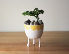 Large Yellow Scalloped-Edge Planter with Legs / on stilts - succulent , cactus, herb planter - handmade pottery from Montreal, Canada Herb Planters, Herb Pots, Ceramic Planters, Planter Pots, Orange And Turquoise, Yellow, Pot Pourri, The Potter's Wheel, Small Plants