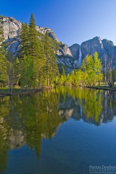Yosemite Falls -Patricia Davidson