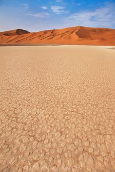 Desert floor and sand dunes, Namib-Naukluft National Park, Namibia