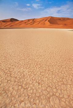 Desert floor and sand dunes, Namib-Naukluft National Park, Namibia