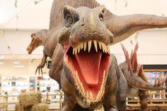 """Shopping Botucatu apresenta a exposição Mundo Jurássico -     Extintos há mais de 65 milhões de anos, os dinossauros ainda despertam fascínio e curiosidade em adultos e crianças. No Shopping Botucatu, o público terá a oportunidade de conhecer esses seres pré-históricos através da exposição """"Mundo Jurássico"""", que acontece de 23 de outubro a - http://acontecebotucatu.com.br/geral/shopping-botucatu-apresenta-exposicao-mundo-jurassico/"""