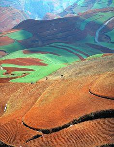 Hillside - Kunming, Yunnan, China   by Feng Zhong