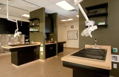 pictures of vet hospital offices | Hampden Family Pet Hospital - Treatment Room