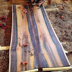 Handcrafting Sawo wood butterfly in Java Palisander (Family of Dalbergia Latifolia) table! Slabwood, Live-edge table, Plankebord, langbord, butterflyjoint #Sonokeling#