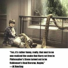 Cool Harry Potter Fact! :P