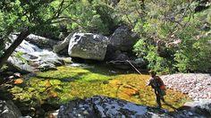 jan du toits river - Google Search Rivers, Westerns, Mountains, Google Search, Nature, Inspiration, Travel, Art, Biblical Inspiration