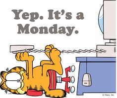 "Garfield Says, ""I Hate Mondays. likes · 2 talking about this. Garfield says, ""I hate Mondays. Garfield Pictures, Garfield Quotes, Garfield Cartoon, Garfield And Odie, Garfield Comics, Cartoon Cartoon, Hate Monday Quotes, I Hate Mondays, Work Quotes"