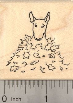 Bull Terrier Dog Rubber Stamp, in Autumn Leaves (E22610) $8 at RubberHedgehog.com