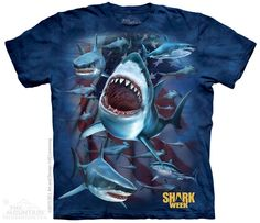 12e968409bd6 Shark Country T-Shirt - The Mountain - Adult - starting at  19.99 Shop where