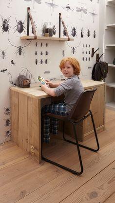Behang Insekten OZ 3132? De leukste Padvinder voor de kinderkamer bij Saartje Prum.