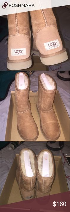Uggs Chestnut size 7 uggs with original box UGG Shoes Winter & Rain Boots