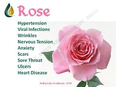 Rose. Anybody interested in purchasing the oils or learning more can email me at info@allaboutumassage.ca Or follow us on FB: www.facebook.com/allaboutumassage Distributor: All About U Massage #1368262