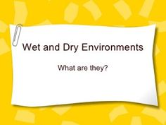 Wet And Dry Environments Teaching Manners, Teaching Ideas, High Middle Ages, Character Trait, Book Activities, Activity Ideas, School Resources, Vocabulary Words, Wet And Dry